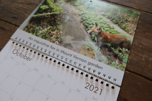 2021 Bach Centre Calander Fox